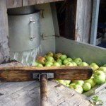 Apple Pressing in Graubunden